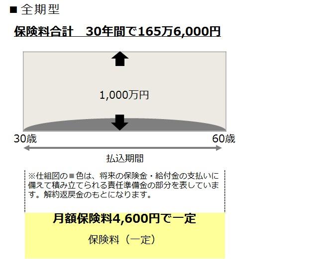 14-2定期保険【更新型】
